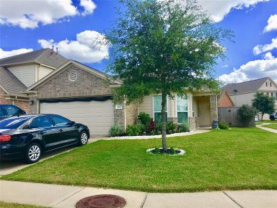 Tomball Single Family Home For Sale: 11311 Dahlia Dale Drive