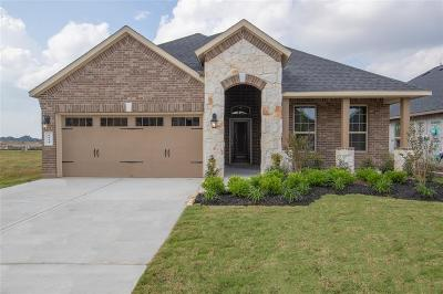 Rosenberg Single Family Home For Sale: 8614 Green Paseo Place