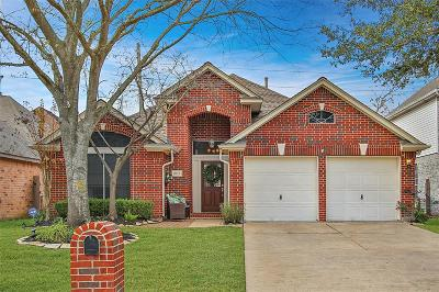 Houston Single Family Home For Sale: 8019 Oceanside Drive