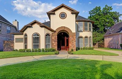 Bellaire Single Family Home For Sale: 6 Azalea Trail Lane