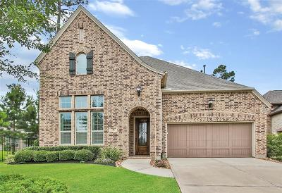 Tomball Single Family Home For Sale: 51 Twin Ponds Place