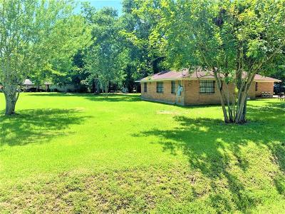Houston Single Family Home For Sale: 8727 Dexter Street