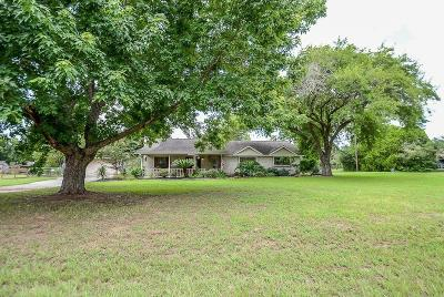 Tomball Single Family Home For Sale: 18918 Meadow Lane
