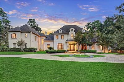 Houston Single Family Home For Sale: 1 Mott Lane