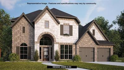 Fulshear Single Family Home For Sale: 3827 Desert Springs Lane