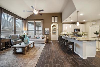 Missouri City Single Family Home For Sale: 2518 Grandberry Point Drive