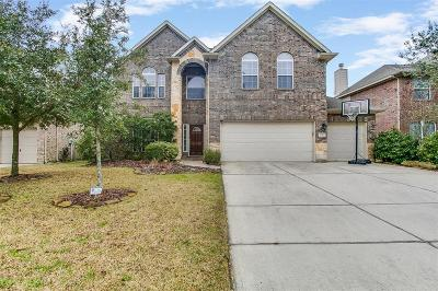 Houston Single Family Home For Sale: 14323 Baron Creek Lane