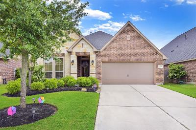 Katy Single Family Home For Sale: 29139 Bentford Manor Court