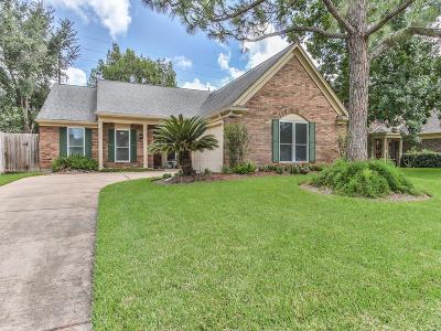 Katy Single Family Home For Sale: 1007 Long Prairie Drive