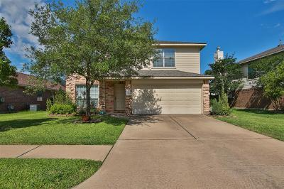 Tomball Single Family Home For Sale: 18315 Melissa Springs Drive