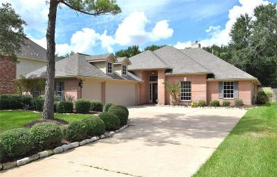 Katy Single Family Home For Sale: 21922 Windmill Bluff Lane