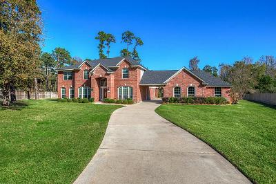 Tomball Single Family Home For Sale: 29734 Orchard Grove Drive
