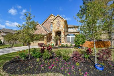 Montgomery County Single Family Home For Sale: 133 Jaxxon Pointe Drive