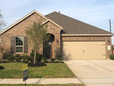 Katy Single Family Home For Sale: 3831 Keetings Lagoon