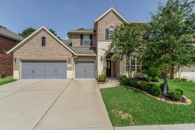 Houston Single Family Home For Sale: 4506 Pine Hollow Trace