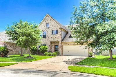 Katy Single Family Home For Sale: 3610 Knights Hollow Court