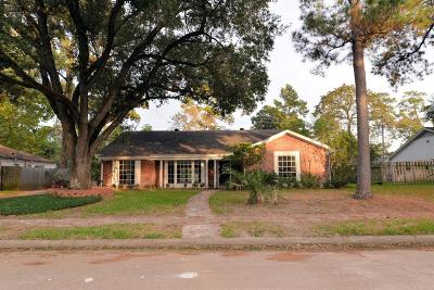 Houston Single Family Home For Sale: 218 Faust Lane