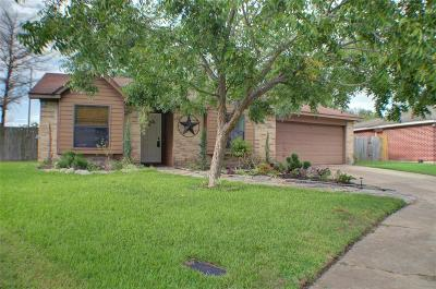 Katy Single Family Home For Sale: 24118 Bassett Hall Lane