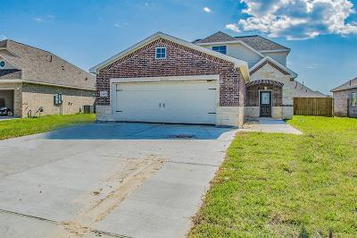 Baytown Single Family Home For Sale: 222 Rio Grande Drive