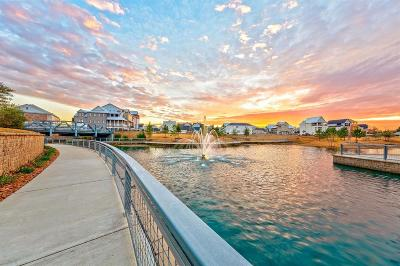 Houston Single Family Home For Sale: 2408 Lake Kolbe Lane