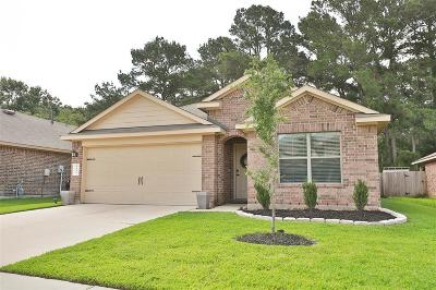 Tomball Single Family Home For Sale: 9631 Paloma Creek Drive