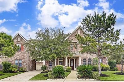 Katy Single Family Home For Sale: 27602 Guthrie Ridge Lane
