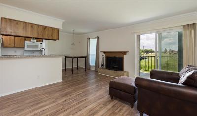 Webster Condo/Townhouse For Sale: 18515 Egret Bay Boulevard #707
