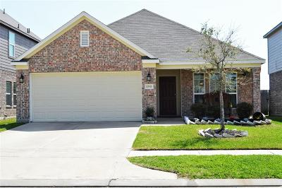 Tomball Single Family Home For Sale: 10911 Chestnut Path Way