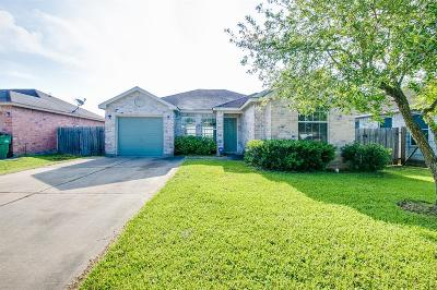 Rosharon Single Family Home For Sale: 5411 Rio Alamo Street