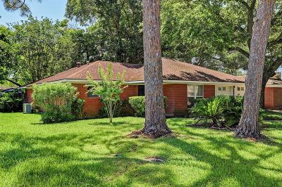 Alvin Single Family Home For Sale: 1205 Terrace Drive