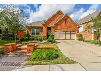 Cypress Single Family Home For Sale: 17219 Williams Oak Drive