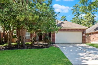 The Woodlands Single Family Home For Sale: 22 Steep Trail Place