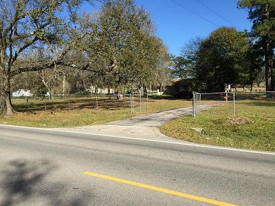 Tomball Farm & Ranch For Sale: 17310 N Eldridge Parkway