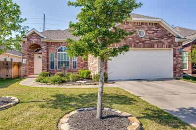 Tomball Single Family Home For Sale: 10030 Taylor Springs Lane