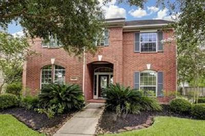 Sugar Land Single Family Home For Sale: 2102 Upland Park Drive