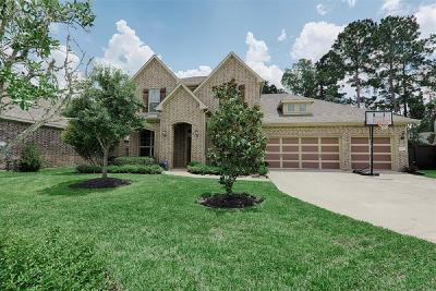 Single Family Home For Sale: 31310 Riley Woods Court