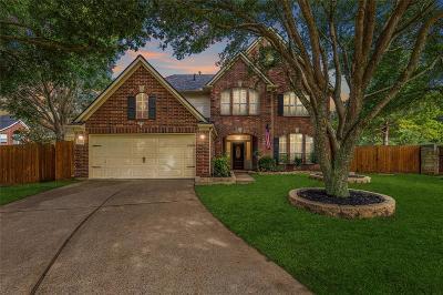 Houston Single Family Home For Sale: 10523 Saddle Back Pass
