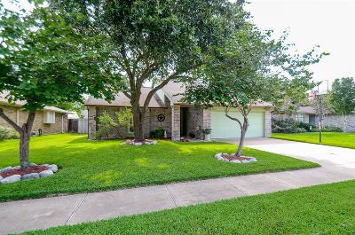 Katy Single Family Home For Sale: 1215 Three Forks Drive