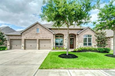 Manvel Single Family Home For Sale: 2811 Joshua Tree Lane