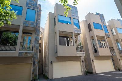 Houston Single Family Home For Sale: 2413 Ralph Street #6