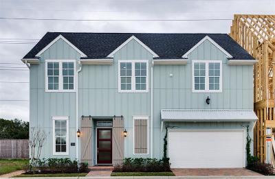 Houston Single Family Home For Sale: 2506 Kolbe Reach Lane