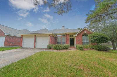 Houston Single Family Home For Sale: 14102 El Camino Real