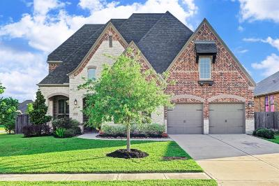 Friendswood Single Family Home For Sale: 2317 Hamilton Pool Lane