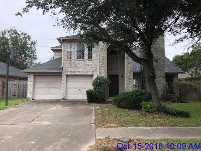 Houston Single Family Home For Sale: 16703 N Meadow Drive