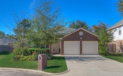 Spring Single Family Home For Sale: 24911 Shalford Court