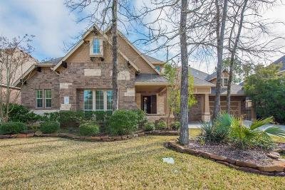 Conroe Single Family Home For Sale: 107 Andrew Ridge Lane