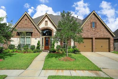 Pearland Single Family Home For Sale: 13619 Starwreath Drive