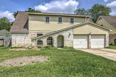 Tomball Single Family Home For Sale: 22710 River Birch Drive