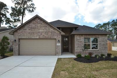 Conroe Single Family Home For Sale: 17202 Glen Oak Drive