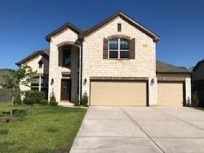Galveston County, Harris County Single Family Home For Sale: 711 S Chamfer Way